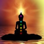 medit4